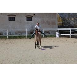 HorseMan ze Země Koní