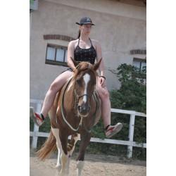 Individuální hodina s koňmi